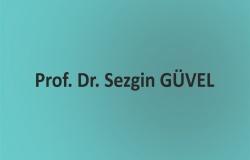 sezgin-guvel120918